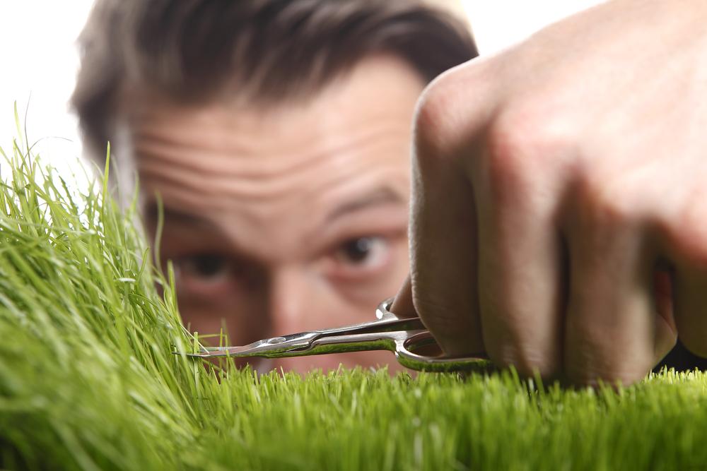 Rezač trave
